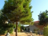 halkidiki-solunski-zaliv-antropoloski-muzej-petralona-1-3