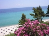 halkidiki-kasandra-alexander-the-great-25