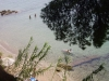 halkidiki-sitonija-zapadna-obala-nikiti-elia-7