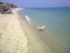halkidiki-kasandra-golden-beach-11
