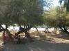 halkidiki-sitonija-neos-marmaras-plaza-6