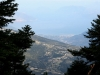 kefalonija-nacionalni-park-enos-13g