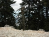 kefalonija-nacionalni-park-enos-5g