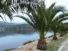 kefalonija-laguna-kutavos-22g