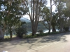 kefalonija-laguna-kutavos-25g