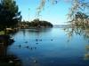 kefalonija-laguna-kutavos-29g