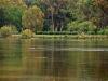 kefalonija-laguna-kutavos-8g