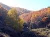 halkidiki-holomontas-planina-1-5