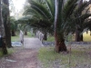 Plaza-Kiani-Akti_1_uspravna-9