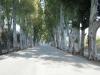 rodos-kolimbia-39-g