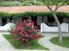 plaza-aretes-sitonija-4