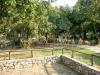 plaza-manasu-sitonija-vurvuru-sarti-13