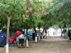 plaza-valti-sitonija-sikia-11