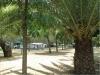 plaza-sikia-sitonija-48