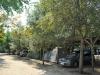 plaza-sikia-sitonija-52