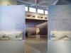 tasos-arheoloski-muzej-tasosa-14-g