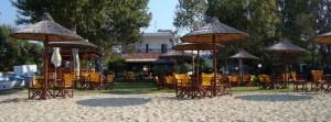 Iz godine u godinu sve je veći broj kafića i beach barova