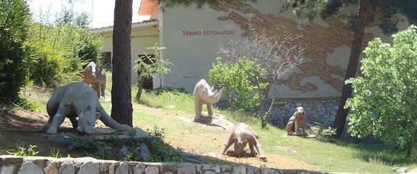 halkidiki-solunski-zaliv-arheoloski-muzej-petralona-tekst (1)