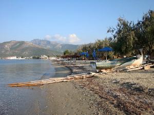 Na plaži se nalazi najveći kamp na Tasosu.