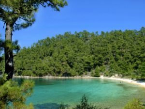 Predivno zelenilo okružuje ovu skrivenu peščanu plažu
