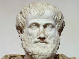 Aristotel-2-Thumb