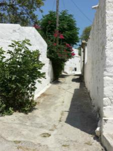 Selo Lahanja