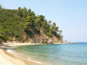 Na plaži postoji i organizovani kamp