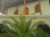kefalonija-manastir-kipureon-16g