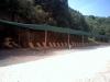 Plaza-Zugla-Olimpijada-Jerisos-Atos-6