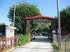 plaza-kriarici-kriaritsi-sitonija-sikia-32